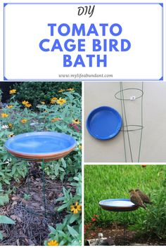 DIY Tomato Cage Bird Bath