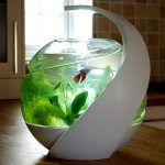 Avo - Self-cleaning Tropical Fish Tank