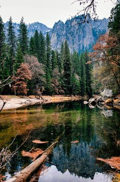 Yosemite National Park by Snow Wolf on 500px