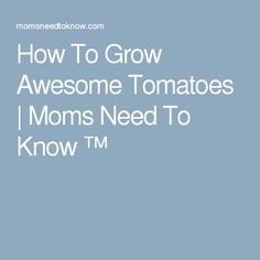How To Grow Awesome Tomatoes | Moms Need To Know ™
