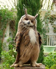 LOVE this owl! Strike a pose! Eurasian Eagle Owl (bubo bubo) by Helen Priem Animals And Pets, Funny Animals, Cute Animals, Funny Owls, Fun Funny, Wild Animals, Owl Pictures, Funny Animal Pictures, Owl Photos