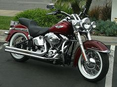 motorcycles for sale matching: Harley-Davidson® Softail® for Sale. Harley Panhead, Harley Davidson Knucklehead, Harley Bikes, Classic Harley Davidson, Used Harley Davidson, Harley Davidson Motorcycles, Scooters, Custom Harleys, Custom Bikes