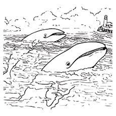 Popular Free Ocean Coloring Pages 60  Best Free Printable