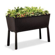 Keter Easy Grow Resin Elevated Garden, All Weather, Self-Watering Plastic Planter, Brown Rattan - Walmart.com
