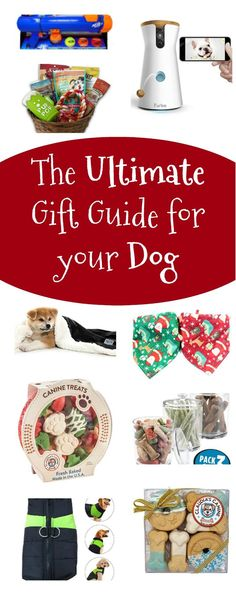 The Ultimate Gift Guide for Your Dog - Unique Gifter - - Animals and Pets. Dog Birthday Presents, Funny Christmas Presents, Dog Presents, Dog Christmas Ornaments, Christmas Puppy, Family Christmas Gifts, Christmas Animals, Diy Christmas, Birthday Gifts