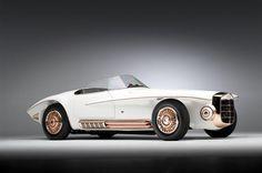 1965 Mercer Cobra Roadster concept