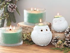 Available July 27! Nature's Light 3-Wick Jar Candles and Nature's Love Owl Candle holders.