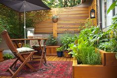 Gardeners must balance multiple demands in a small outdoor space. Through careful planning, this gardener produces a lot of food on a modest patio. Image: Jackie Connelly