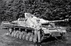 Un StuG IV de la 17. SS-PanzerGrenadier-Division « Götz von Berlichingen » (1. Kompanie/SS-Pz.Abt. 17) quelque part sur le front Normand. Cette unité SS sera notamment responsable du massacre de Maillé le 25 août 1944 où 124 civils furent assassinés.
