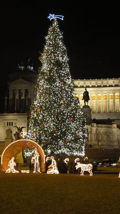 Christmas in Rome. Phono courtesy of Ale_C79.