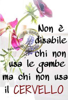 Non è disabile chi non usa le gambe ma chi non usa il cervello #frasi
