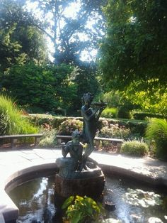 in Central Park, across from el barrio and Museo del Barrio in NYC. French Formal Garden, New York Museums, One With Nature, Formal Gardens, Organic Vegetables, Central Park, Horticulture, Pet Birds, Statue Of Liberty