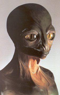 Reptilian Alien.