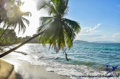Playa Punta Uva, costa caraibica della #Costarica Playa Punta Uva - Caribbean Coast #costarica #playa #beach #spiaggia #caraibi #caribbean #natura #nature #freedom #parks #puntauva