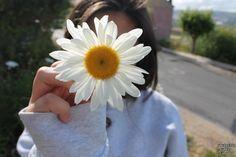 daisy.♡