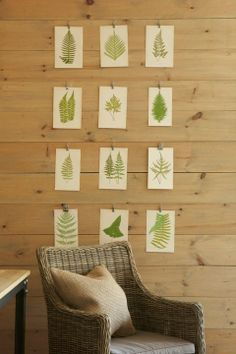 source: Tracery Interiors  Casual art with green foliage prints pinned to wood plank walls and wicker chair.