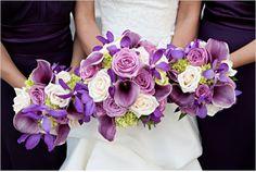 Love the Purple !