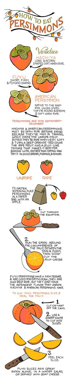 Illustrated guide to Persimmons. I hope to have an abundance of Fuyu persimmons available in the fall, if any of you are interested. Footnote: You can actually eat the peel of fuyu persimmons, so this last step is optional. But, I always peel mine! How To Eat Persimmon, Persimmon Recipes, Persimmon Fruit, Fruit Recipes, Fall Recipes, Cooking Recipes, Healthy Snacks, Healthy Recipes, Healthy Eating