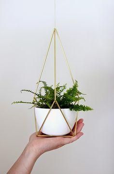 NATURE WHISPER: DIY Modern Home Decor : 5 Planting decor ideas
