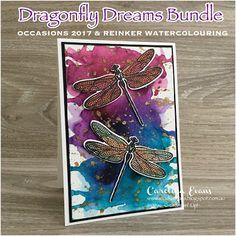 Carolina Evans - Stampin' Up! Demonstrator, Melbourne Australia: Bold Splash of Colour - Dragonfly card