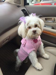 Where we goin' mom?