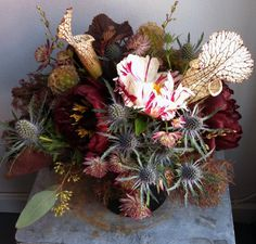 Sea holly, tulip, pitcher plant, peonies, By Sullivan Owen