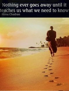 Pema Chodron, Going Away, Need To Know, Teacher, Water, Outdoor, Gripe Water, Outdoors, Saying Goodbye