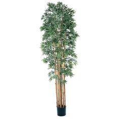 Wonderful natural trunks on this Bamboo Japonica 6' silk tree that's delivering the Asian beauty from ExcellentSilkFlowers.com.