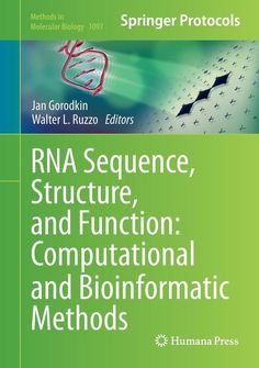 RNA Sequence, Structure, and Function: Computational and Bio