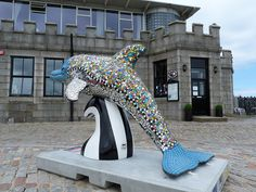 Wild Dolphins Aberdeen - Amo La Vida - Silver Darling Restaurant, Aberdeen Harbour.
