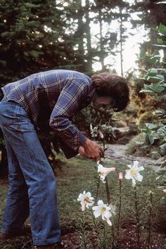 """George gardening. """"I'm really quite simple. I don't want to be in the business full time, Because I'm a gardener. I plant flowers and watch them grow. I don't go out to clubs, I don't party I stay at home and watch the river flow"""""""