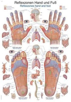 How to give a great massage Pictures) Herbal Remedies, Natural Remedies, Health And Wellness, Health Tips, Health Fitness, Acupuncture, Reflexology Massage, Reflexology Points, Massage Therapy