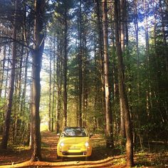 Fiat 500 jest idealny nie tylko na miejskie wycieczki ;) #Fiat #Fiat500