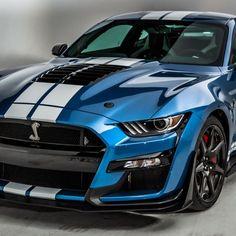 Shelby Car, Ford Mustang Car, Ford Mustang Shelby Gt500, Mustang Cobra, Ford Gt, Ford Trucks, 4x4 Trucks, Chevrolet Trucks, Diesel Trucks