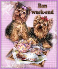 Bon week end à vous mes ami(e)s  ...  bon vendredi !
