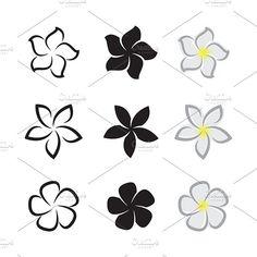 Graphics Vector of tropical flowers frangipani (plumeria) on white - Files Vector - by Frangipani Tattoo, Plumeria Flowers, Hawaiian Flowers, Tropical Flowers, Tropical Flower Tattoos, Stencil Designs, Henna Designs, Tatouage Plumeria, Nail Art Fleur
