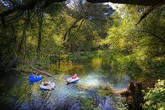 Tubing down the Ichetucknee River in North Florida