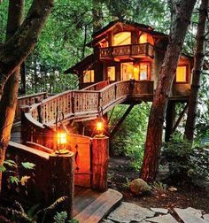 Nice Cabin in the Woods