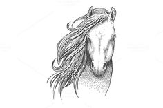 Beautiful wild horse sketch. $6.00