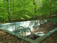 Abandoned swimming pool alone in woods