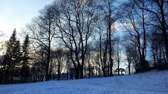 Very cold afternoon in #Oslo #Norge at negative 7 Celsius. At least the sun appeared. #sthanshaugen http://ift.tt/2jYwSvO