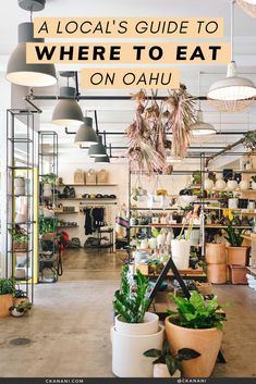 A local's guide to the best places to eat on Oahu, Hawaii. The best malasadas, shave ice, views, and more. Oahu Hawaii / Oahu Hawaii things to do in / Oahu Hawaii secrets / Oahu food guide / Oahu food restaurants / Honolulu Hawaii / Honolulu Hawaii things to do in / North Shore Oahu / Hawaii food guide / Oahu eats / best places to eat in Oahu / where to eat in Oahu / Waikiki Hawaii / #oahu #hawaii #foodguide #honolulu #waikiki Hawaii Usa, Honolulu Hawaii, Hawaii Travel, Honolulu Restaurants, Hawaii Things To Do, Shave Ice, North Shore Oahu, Waikiki Beach