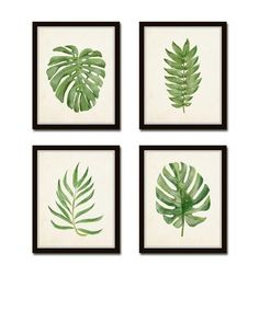 Watercolor Tropical Leaf Set No. 2 Giclee Art Botanical Print Tropical Prints Coastal Art Tropical Leaves Prints Collage Leaf Print - April 20 2019 at Tropical Home Decor, Tropical Interior, Tropical Houses, Tropical Prints, Tropical Colors, Tropical Furniture, Tropical Bathroom Decor, Decoration, Art Decor
