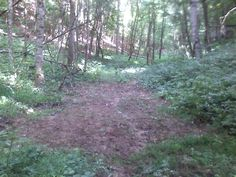 How to Plant a Small 'Remote' Food Plot---Whitetail Hunting