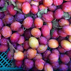 You know it's Autumn when there are Kentish Victoria Plums for sale outside…