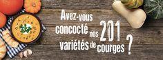 Nouvelle campagne 2015, avec un focus sur nos maraîchers et marchands de courges. #mpm #market #marchéslocaux #courge #squash #automne Bamboo Cutting Board, Decor, Gourds, Rural Area, Fall Season, Decoration, Decorating, Deco