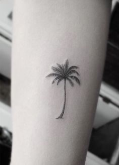 palm tree tattoo on ankle - Google Search