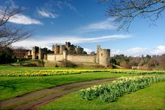 Alnwick Castle, Free Online Jigsaw Puzzles, Mansions, Palaces, House Styles, Castles, Outdoor, Libros, Outdoors