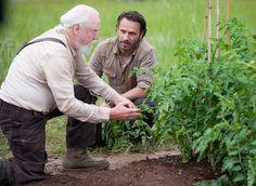 The Walking Dead Épisode 1 Saison 4 – 30 Days Without an Accident