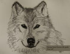 Art Contest Semifinalist, Grades 3-5: Gray wolf, George Aaron Koonce, Age 10, Home Education Partnership